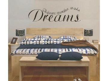Träume werden wahr Dreams