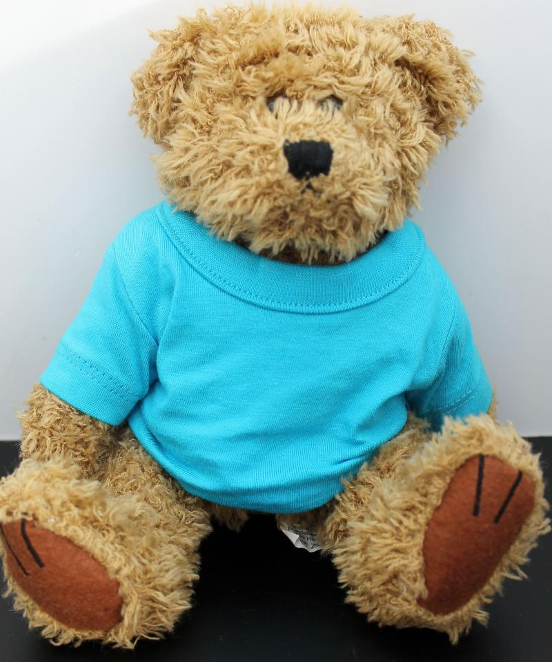 Kuscheliger Teddy Braun Türkis T-Shirt ohne Druck