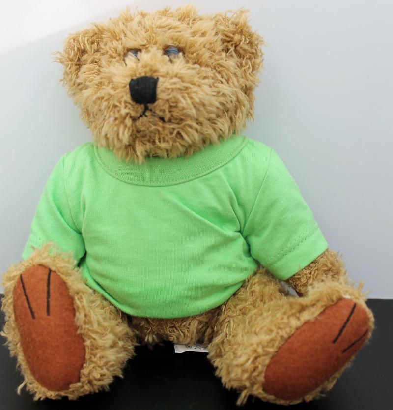 Kuscheliger Teddy Braun Grünes T-Shirt ohne Druck