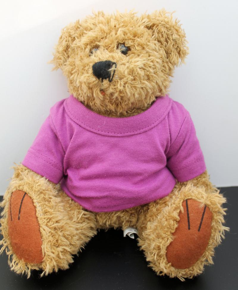 Kuscheliger Teddy Braun Lila T-Shirt ohne Druck