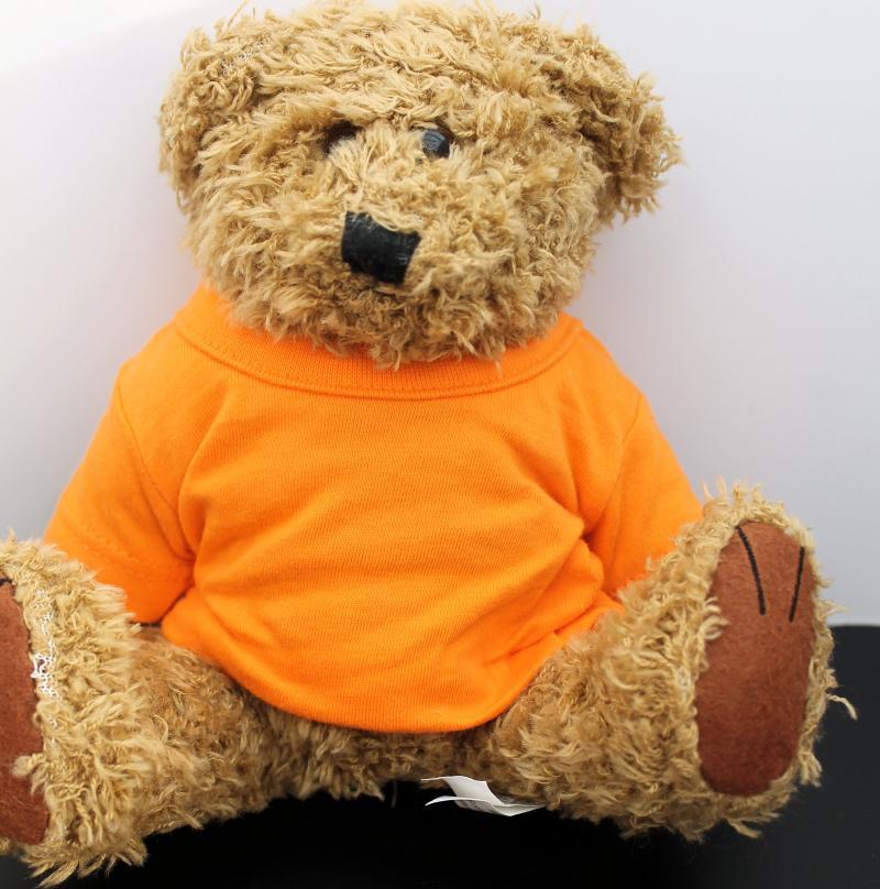 Kuscheliger Teddy Braun Oranges T-Shirt ohne Druck