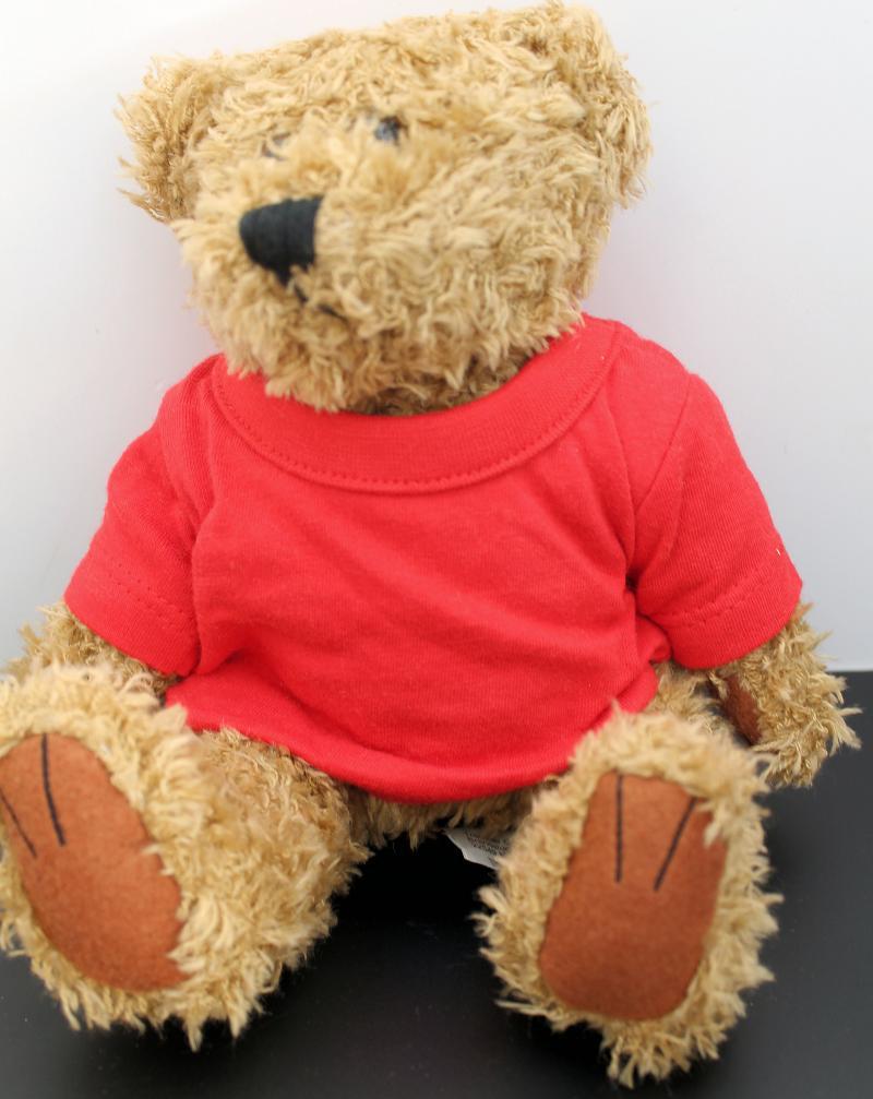 Kuscheliger Teddy Braun Rotes T-Shirt ohne Druck